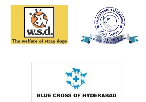 Welfare of Stray Dogs (WSD), Compassion Unlimited Plus Action (Cupa), Friendicoes, the Blue Cross of Hyderabad, the Asha Foundation and many others provide food, sterilization and vaccination services for abandoned dogs.