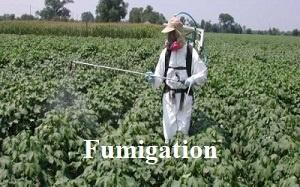 Fumigation