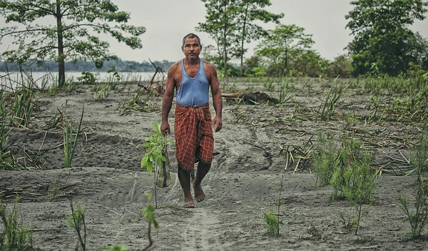 Mr.Payeng initially planted 20 bamboo seedlings on the banks of the Brahmaputra River