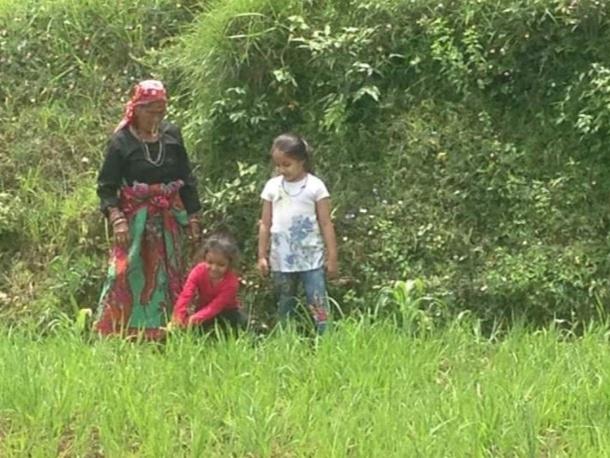 Prabha Devi Planting Saplings