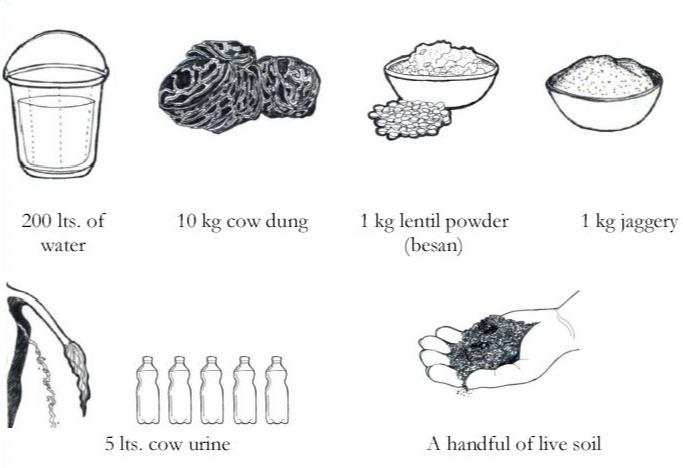 how to prepare Jeevamrut
