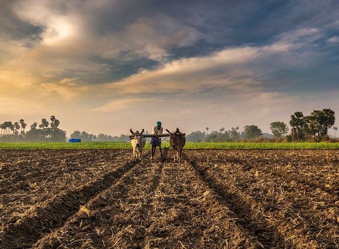 His close observation of the farmers and their agricultural practices across