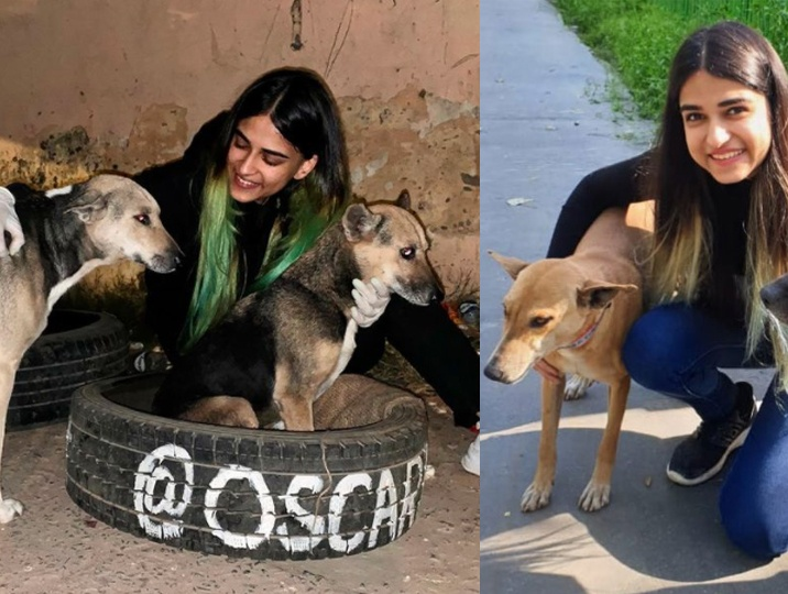 Hear the voiceless strays cry especially during Lockdown, voices this Vet student