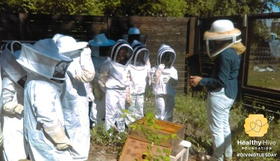 The mission of the Healthy Hive Foundation is to work for saving the Bee population through education, research, and protection