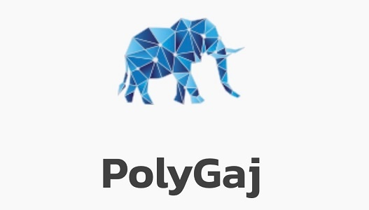 Naik built and designed PolyGaj, a one-stop NFT and DeFi platform based on the Polygon blockchain