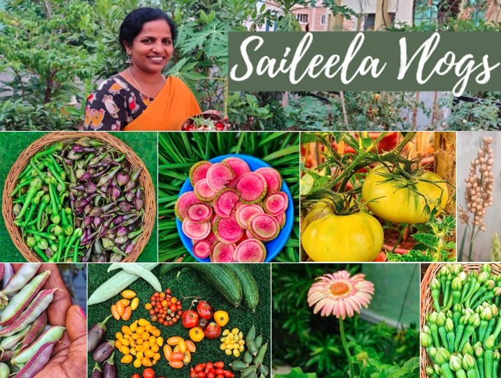 Different Vegetable on a Terrace garden has dazzled the viewers. Exciting, useful tips from her