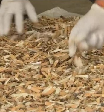 Twinkle Kumar  came across the concept of recycling and upcycling cigarette butts
