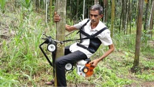 'Areca Bike' that climbs 84-meter-tall Areca nuts in 30 seconds. A conservative and easy-to-use machine reduced costs by 20percent